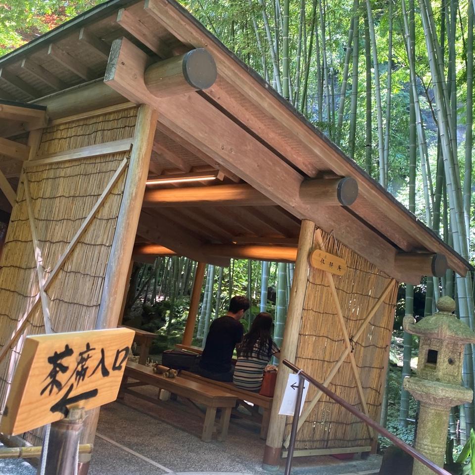 休耕庵 竹の庭の茶席の口コミ