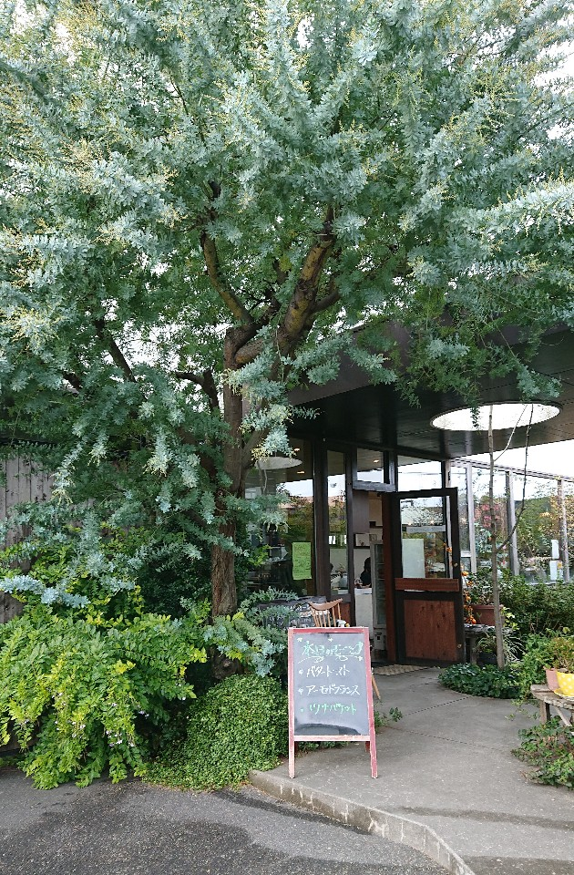 cofe terrace Hanaの口コミ