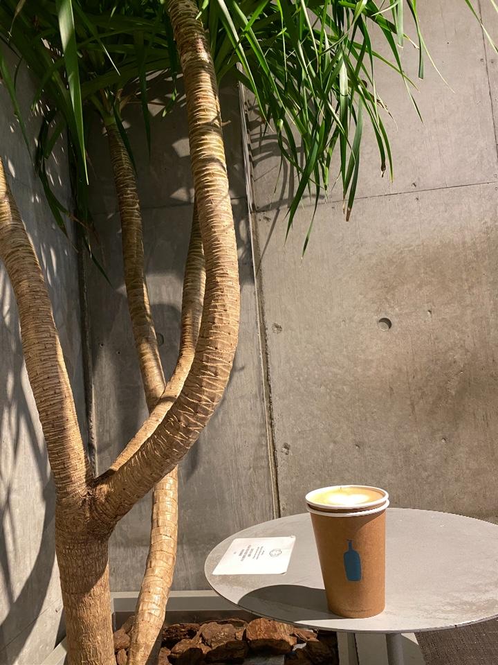 ブルーボトルコーヒー青山カフェ